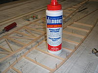 Name: playboy build 005.jpg