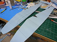 Name: P9041156.jpg
