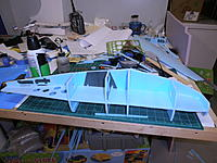 Name: P9051170.jpg