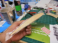 Name: P9161258.jpg