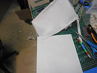 Name: PC071795.jpg