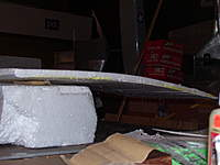 Name: Picture 587.jpg