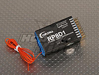 Name: RP8D1-9.jpg