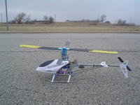 Name: Flying 3-30-2008 (5).jpg