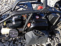 Name: DDM 29cc.jpg
