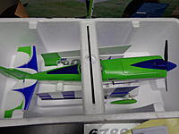 Name: E-Flite QQ EDGE 540 (2).jpg