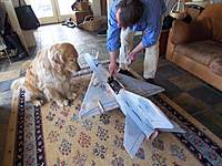 Name: 100_3950.jpg