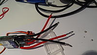 Name: DSC01786.jpg