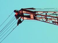 Name: crane4.jpg