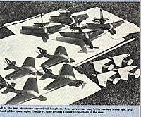 Name: BlueBirds.jpg