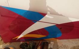 40% pilot yak wings $350 shipped