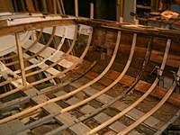 Name: W10 tlc.jpg