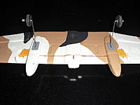 Name: CIMG1650.jpg