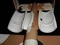 Name: CIMG1656.jpg