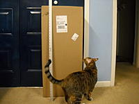 Name: DSCN1888.JPG