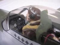 Name: MUSTANG_cockpit.jpg