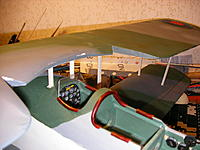 Name: swordfish_detail 003.jpg