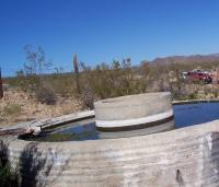 Name: SpringMoj.jpg