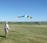 Name: Tinamou[1].jpg