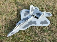 Name: plane-blu_f-22_002.jpg