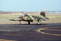 Name: F-5 camo.jpg