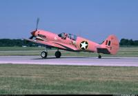 Name: pink p40 2.jpg