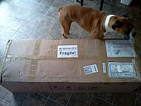 Name: IMG_20120809_120417.jpg