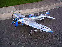 Name: DSCN5571.jpg