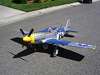 Name: baldeagledone2.jpg