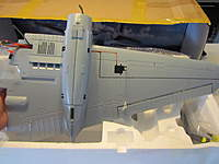 Name: IMG_1601.jpg
