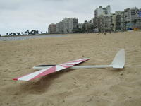 Name: P4290034.jpg