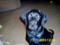 Name: Our Digital Camera 014.jpg