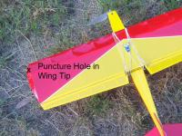Name: Danfy 1 Wing Tip Puncture.jpg