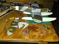 Name: DSC00556.jpg