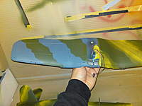Name: DSC00795.jpg
