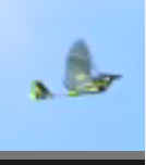 Name: CB 2.PNG