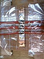 Name: IMAG0892.jpg