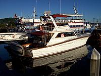 Name: 100_5901.jpg Views: 42 Size: 260.0 KB Description: sport fisherman