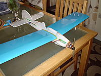 Name: Twirl Monoplane 001.JPG