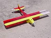 Name: Radical RC E Hornet.jpg