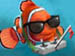 nemo_uk's Avatar