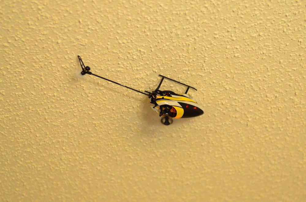 Name: fly15.jpg Views: 366 Size: 112.5 KB Description: