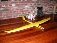Name: Lanyu.jpg Views: 702 Size: 82.3 KB Description: The dogs love the Lanyu!