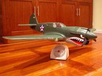 Name: P-40-painted1.jpg
