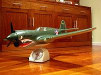 Name: P-40-painted2.jpg
