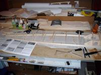 Name: DSC02561.jpg