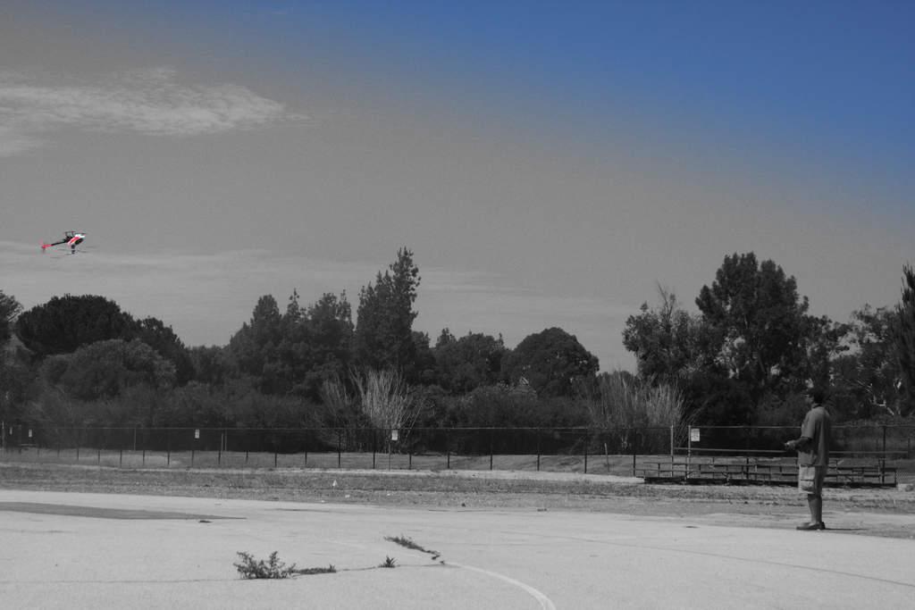Name: Swift.jpg Views: 340 Size: 49.2 KB Description: Location:  San Fernando Valley - Apollo Field