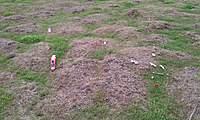 Name: IMAG0133.jpg Views: 150 Size: 132.8 KB Description: Part of the debris field :(
