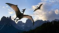 Name: what-is-the-wingspan-of-a-pterodactyl_27bb772f-a74f-49e0-91f6-d6568891dcc9.jpg