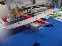 Name: Banshee 4 foot wing.jpg